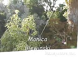 Monica Blewinski POV Blowjob Anal Buttplug Gender Together with Facia